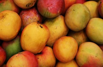 манго - outsideclick / Pixabay